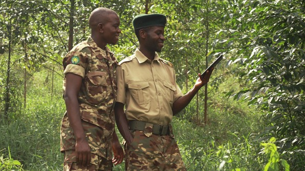 p-2-this-app-helps-forest-rangers-use-satellite-data-on-illegal-logging-without-internet